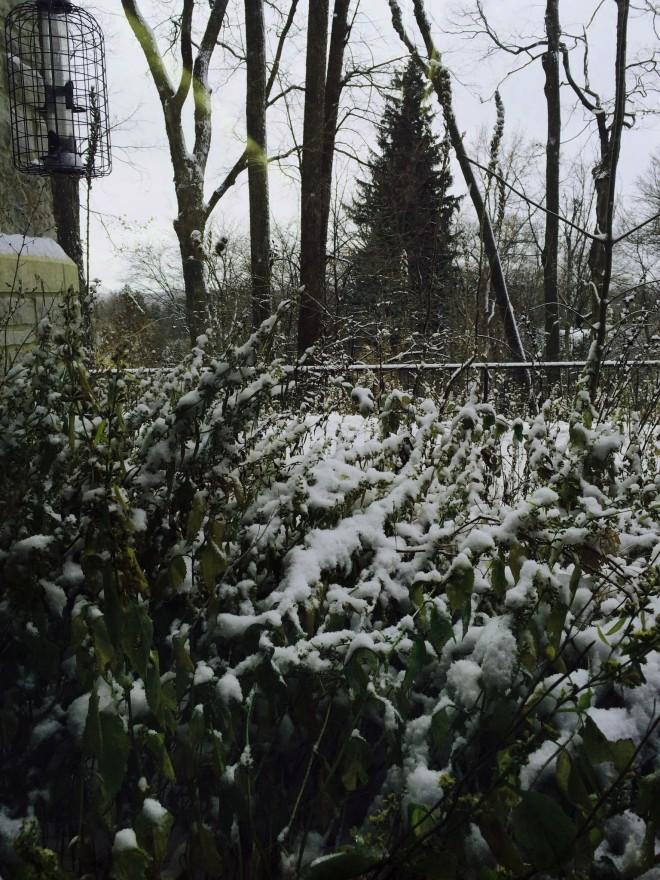 Winter kommt schnell